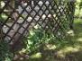 2012.08.10 Kąkolowy ogródek