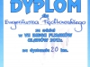 dyp13